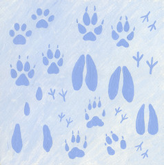 Animals footprints in the snow