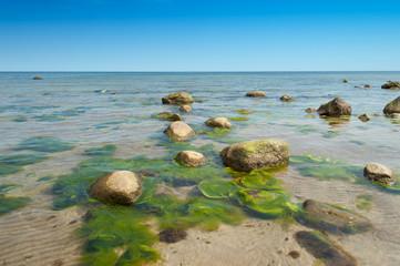 Kristallklares Wasser an der Ostseeküste
