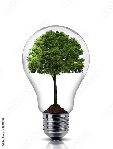 Leinwandbild Motiv ampoule
