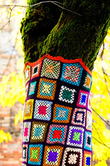 alberi vestiti - dressed trees