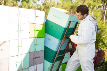 Beekeeper Loading Stacked Honeycomb Crates