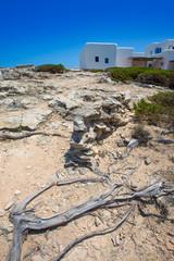 Es calo de san Agustin Beach white houses in Formentera