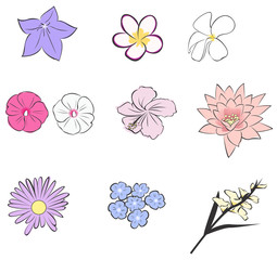 Simple tropical flower icon collection set (vector)