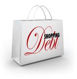Shopping Bag Debt Compulsive Spending Broke poster