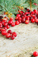 Christmas background with cranberries