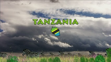 African background, Tanzania