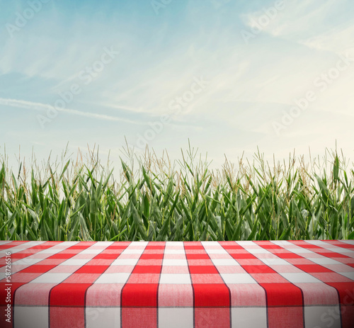 Tablecloth on Cornfield