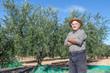 Farmer of olives