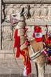 Llama with peruvian flags Arequipa Peru