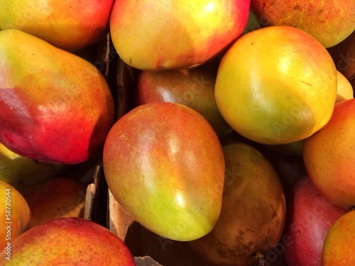 canvas print picture Mangos