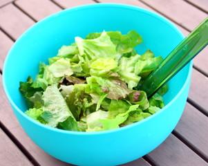 saladier de salade verte