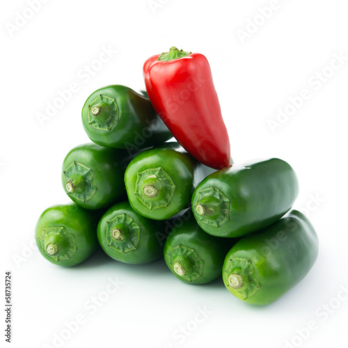 Jalapeno hot pepper