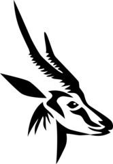 head of horned antelope