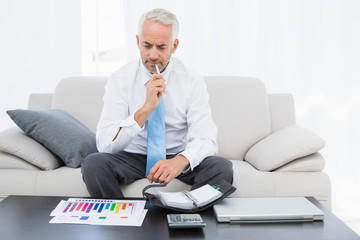 Businessman with graphs and diary sitting in living room