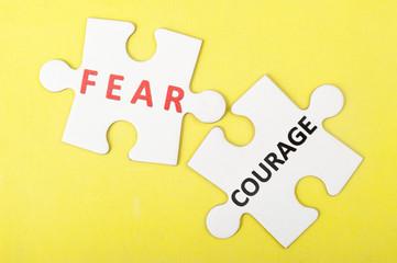 Fear versus courage