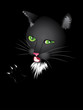 Funny cartoon black cat