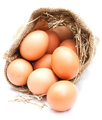 Eggs in canvas sack