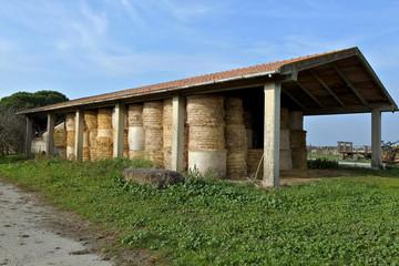 fieni e fattorie italiane