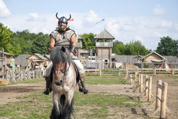 The Viking is take care of his territory