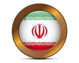 Iran bronze button