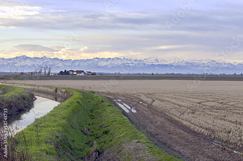 Lomellina countryside autumn view color image