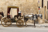 horse-drawn carriage in the streets of Valletta