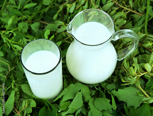 Pitcher and glass of milk on grass