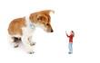 Frauchen möchte mit Ihrem Hund spielen