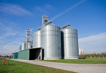 Big silos on large modern cow farm