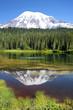 Mt. Rainier volcano