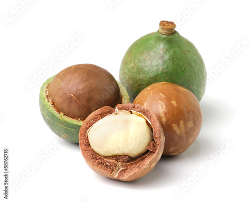 macadamia nuts on white background
