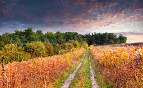 Fototapeta Colorful autumn landscape with a riad
