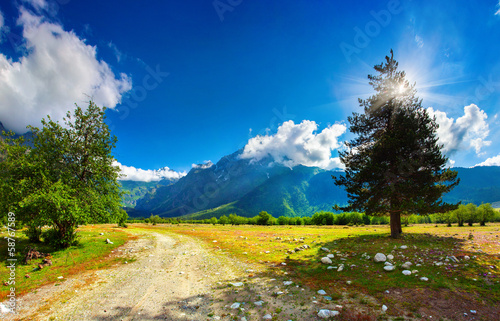 Beautiful view of alpine meadows - 58767589