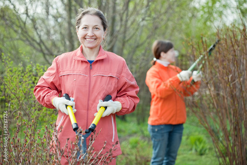 women cutting shrubbery
