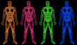 Male coloured bodies