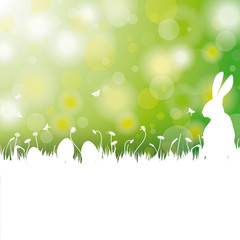 Easter Card Background White Grass Rabbit