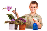 cute boy is watering the flowers poster