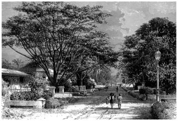 City Batavia (now : Jakarta) - 19th century : a Street