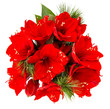 Bouquet of amaryllis. red christmas flowers