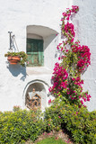 closed window and open birdcage in Santa Catalina monastery Areq