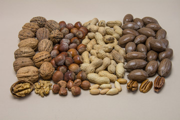 Vier Sorten Nüsse