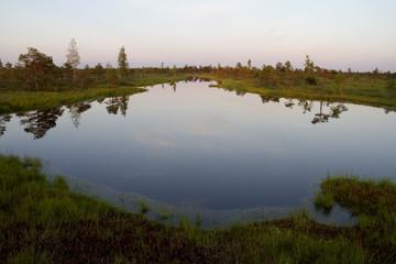 Lake in Kemeri marsh in Latvia