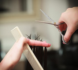 Hairstylist cutting hair client in hairdressing salon poster