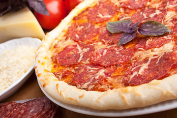 delicious salami  pizza with ingredients