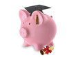 Pink Pig Bank Graduation