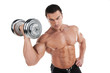 Portrait of sexy muscular man training with dumbbell.