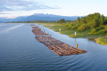 Log driving in river in Canada