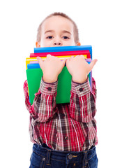 Little boy carrying books