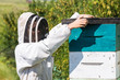 Beekeeper With Fume Board