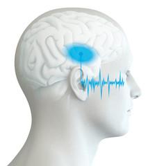 Ohr eines Mannes mit markiertem Hörzentrum